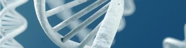 La mucoviscidose : beaucoup de porteurs sains en France